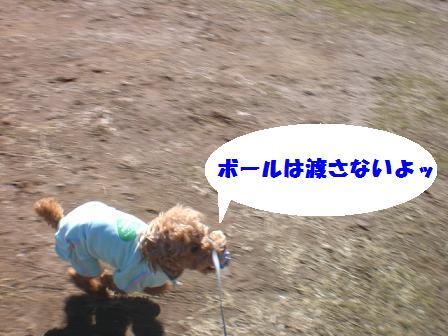 CIMG3421.jpg