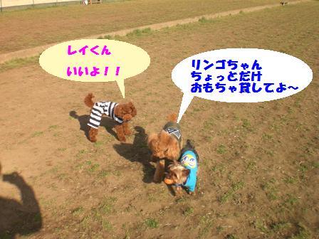 CIMG3564.jpg