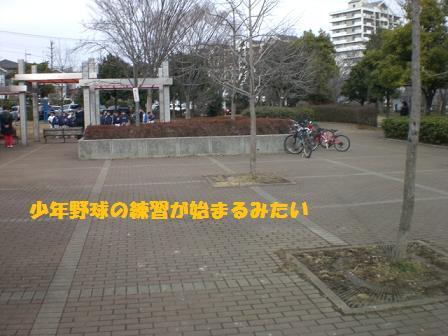 CIMG3623.jpg