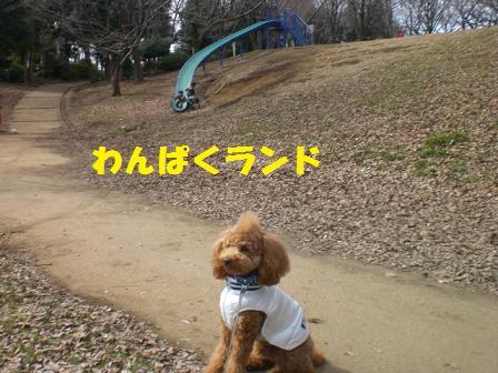 CIMG3756.jpg
