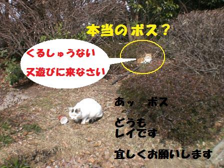 CIMG3770.jpg
