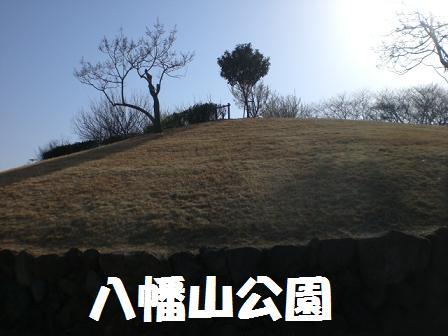 CIMG3936.jpg