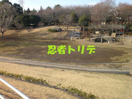 CIMaG3428.jpg