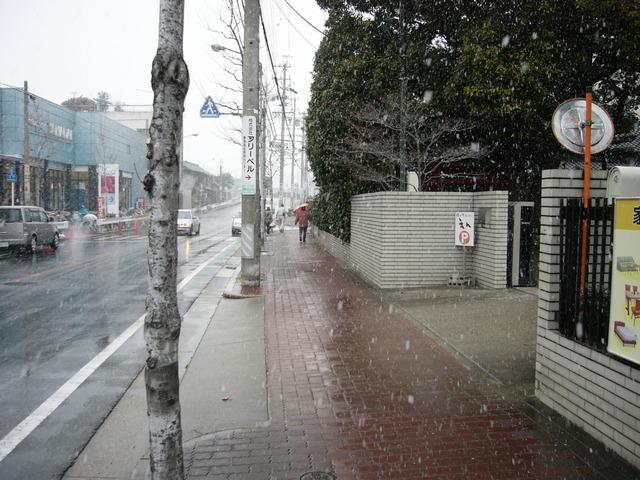 えん 店舗側駐車場入口と前の道路