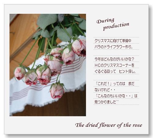 DSC60891.jpg
