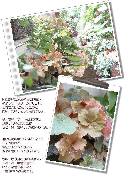 DSC61011.jpg