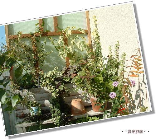 DSC617911.jpg