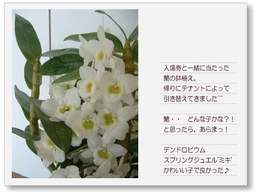 DSC701011.jpg