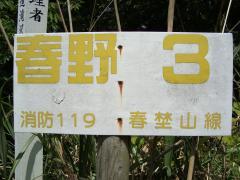 resize3239.jpg