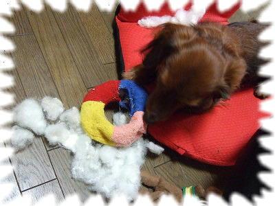 破壊♪綿だし♪