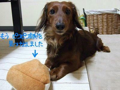 (‥ )ン? 何?