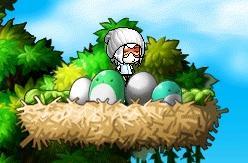 鳥の巣にお邪魔してみる