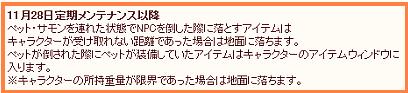 ペットの仕様変更(11/28)