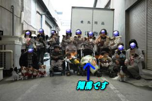imagesyouma1204.png