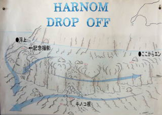 harnon-map1.jpg
