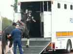 馬の救急車が到着 なんとか収容されたときには拍手が