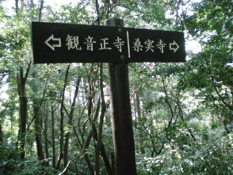 隕ウ髻ウ蟇コ蝓・228_convert_20091029202352