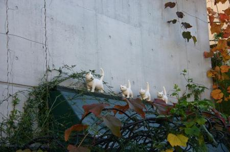 猫町カフェ1