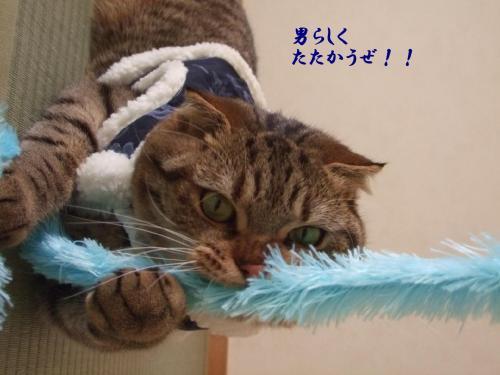 のぼり龍3