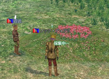 20061006035121.jpg