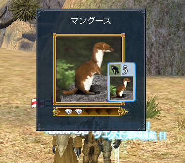 2007-02-20_21-44-20-006.jpg