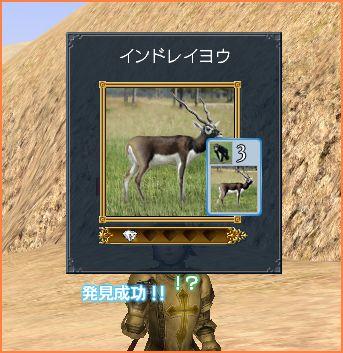 2007-04-06_23-23-19-003.jpg