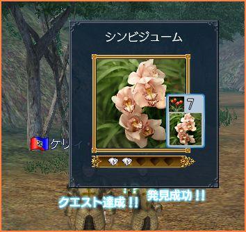 2007-05-06_15-25-48-005.jpg