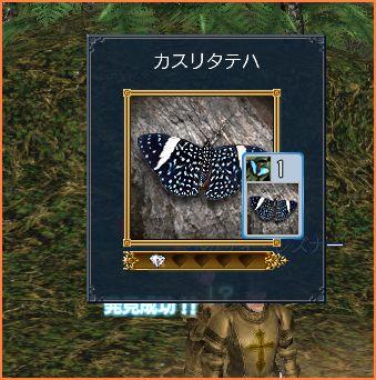 2007-05-12_20-16-23-006.jpg