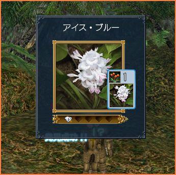 2007-05-12_20-16-23-007.jpg