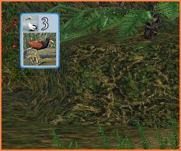 2007-05-12_20-16-23-008.jpg
