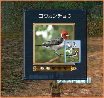 2007-05-27_16-21-16-004.jpg