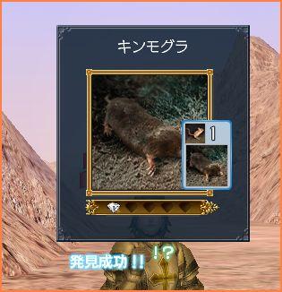 2007-06-03_23-21-20-011.jpg