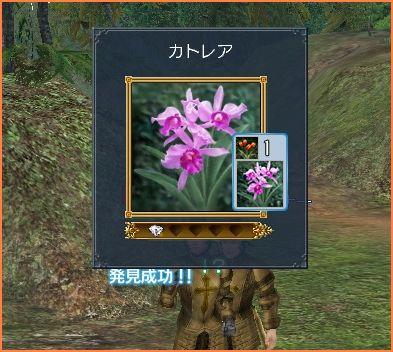 2007-11-23_22-57-37-004.jpg