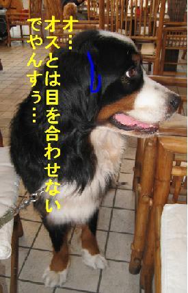 南町田_html_61ee5d08