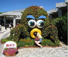 沖縄_html_673652d8