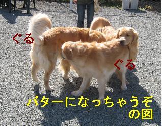 プレイフル_html_6a6dfe56