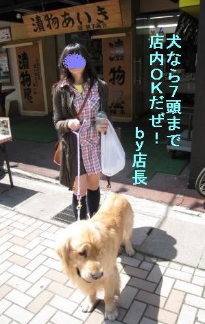 kannon_IMG_2219.jpg