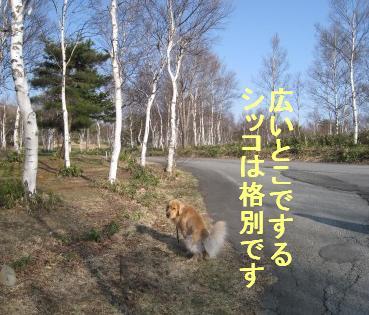 kannon_IMG_2227.jpg