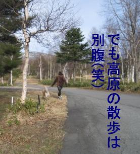 kannon_IMG_2329_20090528000414.jpg