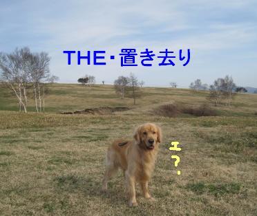 kannon_IMG_2334_20090528000430.jpg