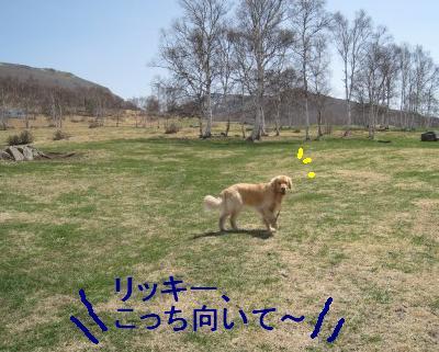kannon_IMG_2392.jpg
