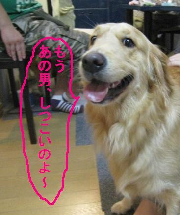 misatoIMG_2941.jpg