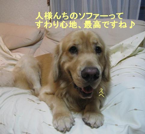 misatoIMG_2954.jpg