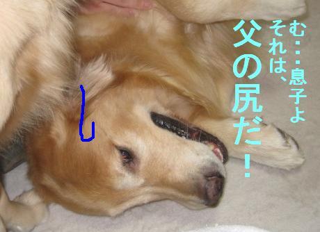 misatoIMG_2957.jpg
