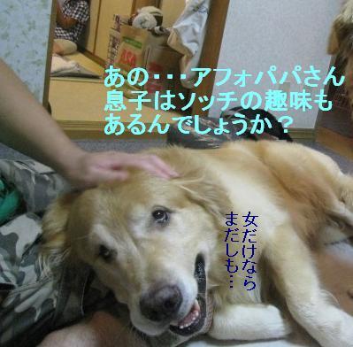 misatoIMG_2960_20090815095237.jpg