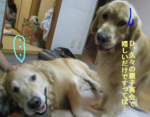 misatoIMG_2961.jpg