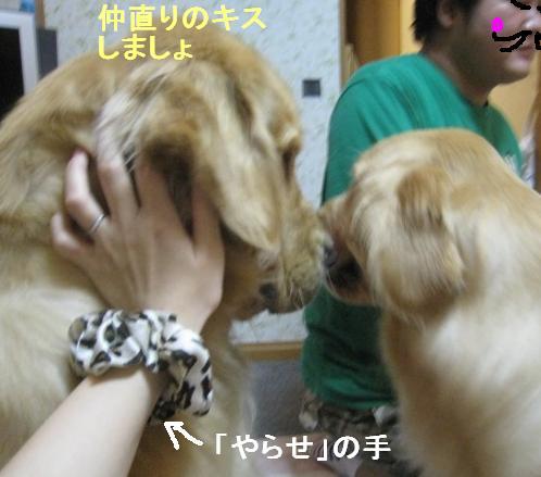 misatoIMG_2968.jpg