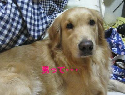 misatoIMG_2982.jpg