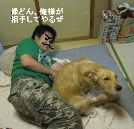 misatoIMG_2987.jpg