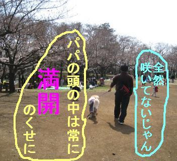 ooike_IMG_2051.jpg